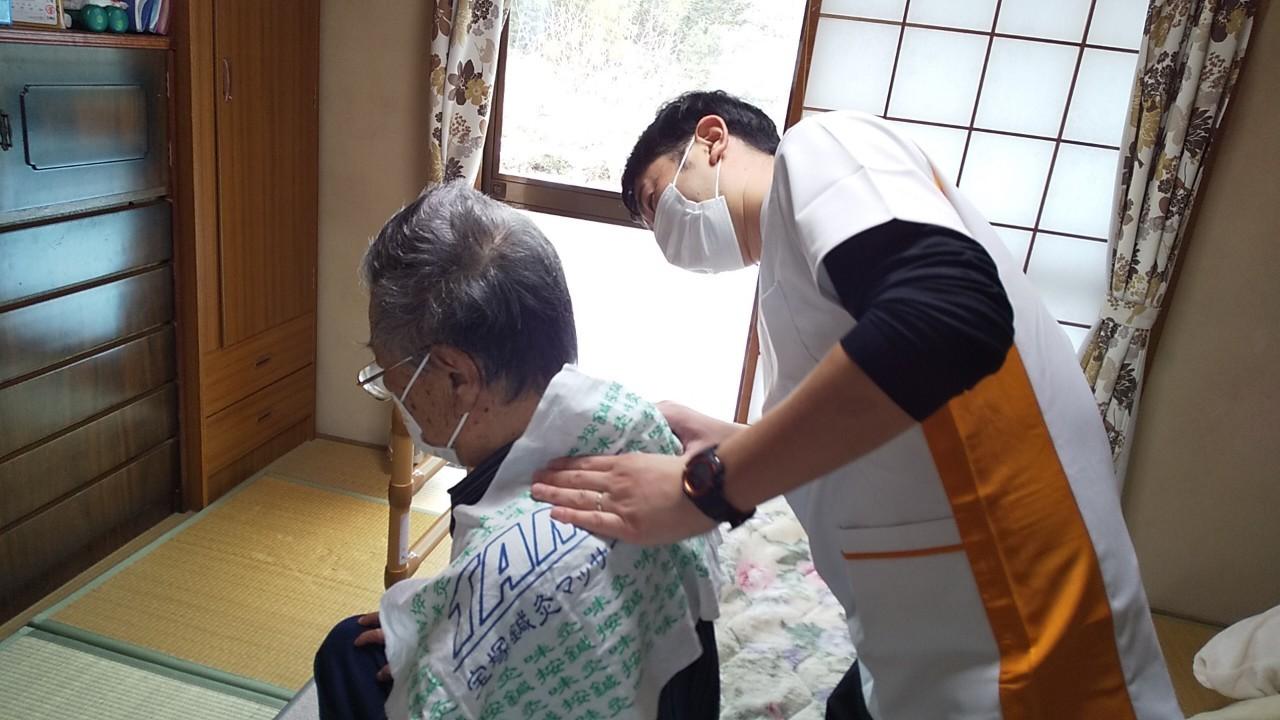 コムギ鍼灸4